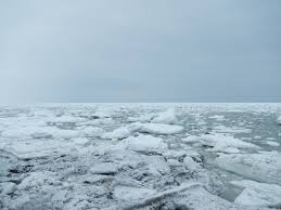海一面が凍りつく