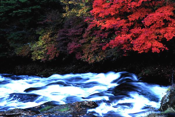 川の流れは同じ水のようでいつもちがう水が流れている